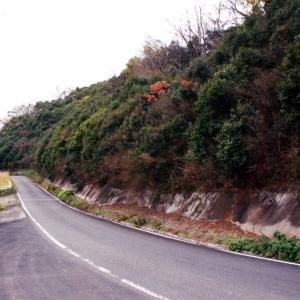 藤の平ダム法面緑化工事