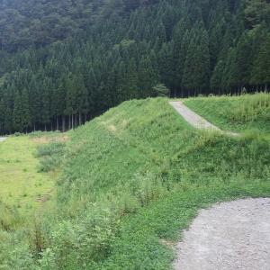 県営林道整備法面保護工事