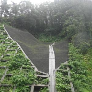 夏泊公園線道路災害防除工事