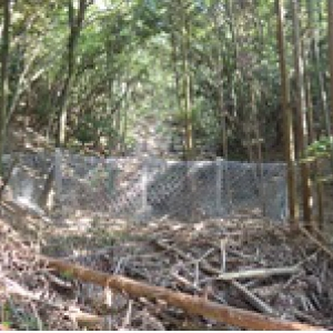 広島災害強靭ワイヤーネット工事